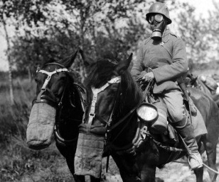 Both chemical and gas warfare was introduced during the First World War. Despite a gas attack taking place much earlier before, a gas masked German soldier and his horse inspect a gas bombed area still considered dangerous for its poisonous residue. (historyboomers.blogspot.com)