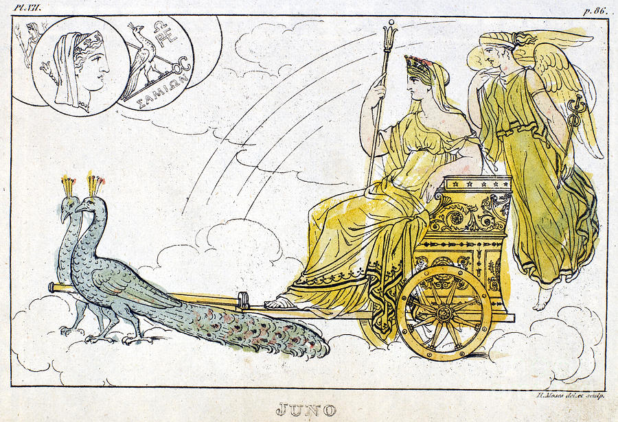 Hera with chariot of peacocks