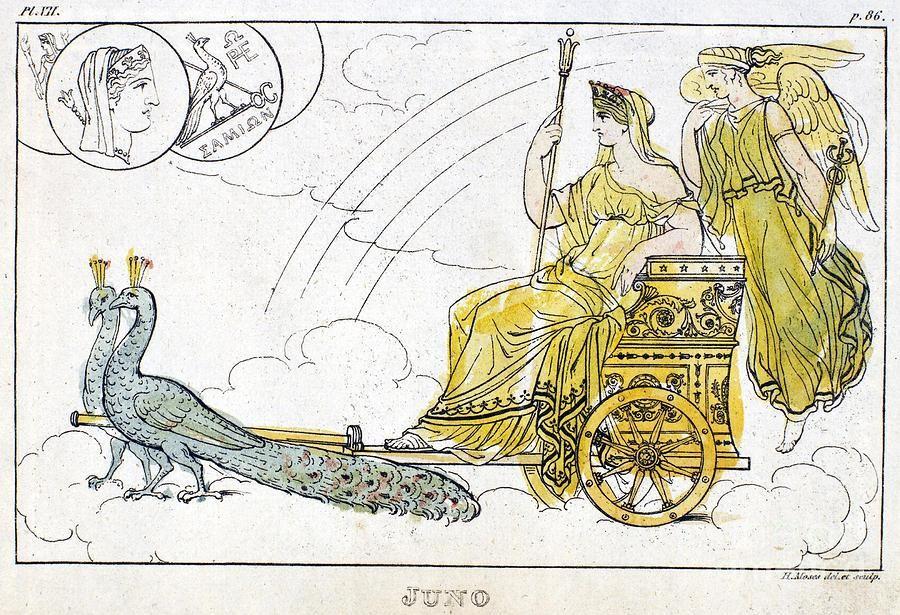 Hera Peacock Chariot