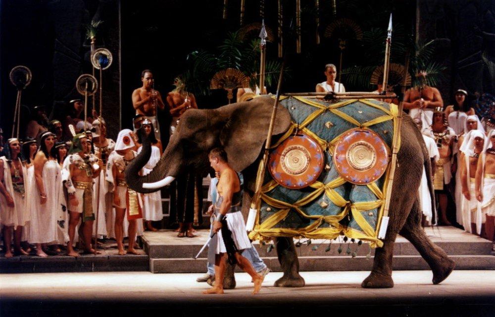 Aida Live Elephant