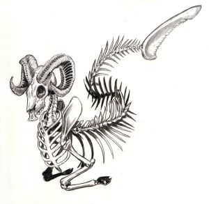 Capricorn Skeleton