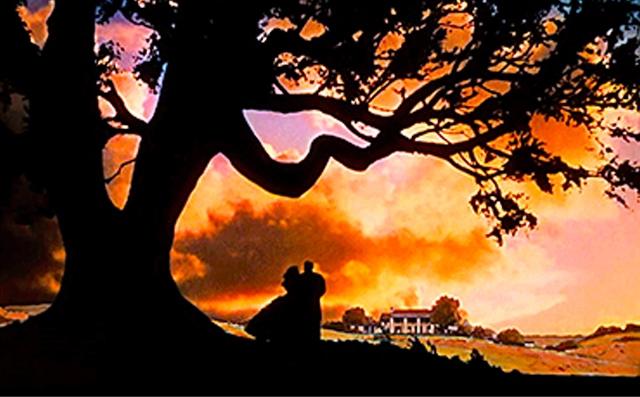 GWTW Tara Tree